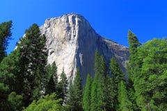 Parque nacional del EL Capitan Yosemite fotos de archivo libres de regalías