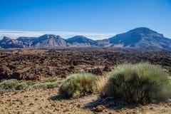 Parque nacional del EL Teide Foto de archivo