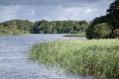 Parque nacional del lago Leane del lago, Killarney Fotos de archivo