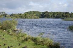 Parque nacional del lago Leane del lago, Killarney Imagen de archivo
