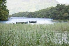 Parque nacional del lago Leane del lago, Killarney Foto de archivo libre de regalías