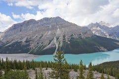 Parque nacional del lago Peyto, Banff imagen de archivo