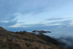 Parque nacional del paparoa del paisaje de Nueva Zelanda Foto de archivo