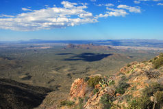 Parque nacional del Saguaro Imágenes de archivo libres de regalías