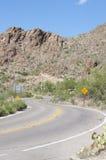 Parque nacional del Saguaro Imagen de archivo libre de regalías
