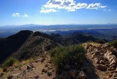 Parque nacional del Saguaro: la visión desde el pico de Wasson Foto de archivo libre de regalías