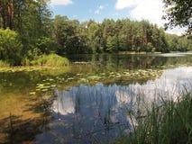 Parque nacional del taitija del ¡de AukÅ (Lituania) Fotos de archivo