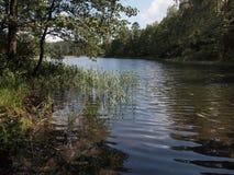 Parque nacional del taitija del ¡de AukÅ (Lituania) Imagen de archivo