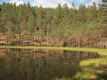 Parque nacional del taitija del ¡de AukÅ (Lituania) Fotos de archivo libres de regalías