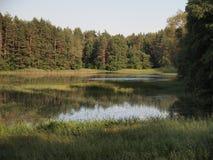 Parque nacional del taitija del ¡de AukÅ (Lituania) Foto de archivo libre de regalías