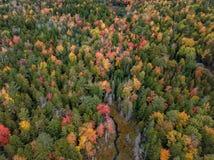 Parque nacional do Acadia em Maine imagens de stock royalty free