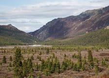 Parque nacional do Denali de Alaska foto de stock