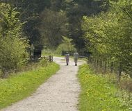 Parque nacional do distrito máximo de Inglaterra derbyshire Foto de Stock Royalty Free