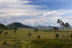 Parque nacional do dos Veadeiros de Chapada Imagem de Stock Royalty Free