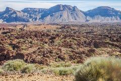 Parque nacional do EL Teide Fotos de Stock