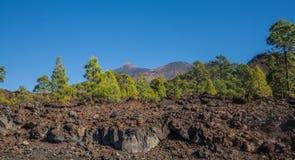 Parque nacional do EL Teide Imagens de Stock