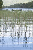 Parque nacional do lago Leane do Lough, Killarney Foto de Stock