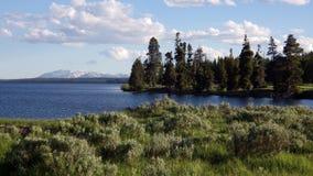 Parque nacional do lago Yellowstone, Yellowstone Imagens de Stock