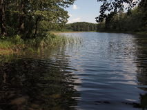 Parque nacional do taitija do ¡ de AukÅ (Lituânia) Fotografia de Stock