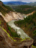 Parque nacional do Yellowstone River, Yellowstone Foto de Stock