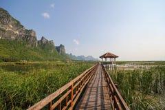 Parque nacional do yod do roi de Khao sam, Tailândia Imagem de Stock Royalty Free