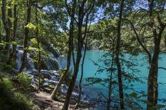 Parque nacional dos lagos Plitvice - Croácia Fotos de Stock Royalty Free