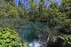 Parque nacional dos lagos Plitvice - Croácia Fotografia de Stock