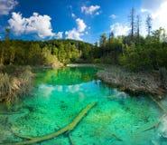 Parque nacional dos lagos Plitvice em Croatia. imagens de stock royalty free