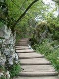 Parque nacional dos lagos Plitvice em Croatia Imagens de Stock