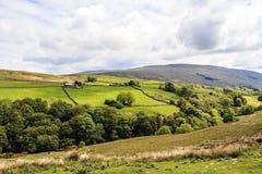 Parque nacional dos vales de Yorkshire Imagem de Stock Royalty Free