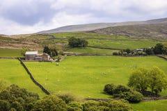 Parque nacional dos vales de Yorkshire Imagem de Stock