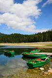 Parque nacional Durmitor - Montenegro Fotos de Stock