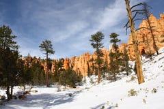 Parque nacional en invierno, Utah, los E.E.U.U. de la barranca de Bryce Fotos de archivo libres de regalías