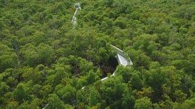 Parque nacional en Miami Imagen de archivo