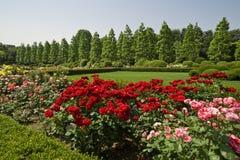 Parque nacional en Tokio, Japón Imagen de archivo libre de regalías