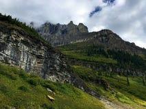 Parque Nacional Glacier Fotos de archivo
