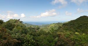 Parque nacional grande de Etang - floresta e mar das caraíbas Fotografia de Stock Royalty Free