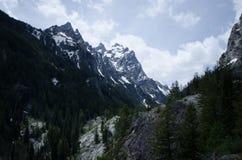 Parque nacional grande de Teton Fotos de Stock Royalty Free