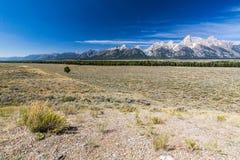 Parque nacional grande de Teton Fotografia de Stock