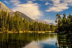 Parque nacional grande de Teton, Wyoming foto de stock