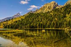 Parque nacional grande de Teton, Wyoming imagens de stock royalty free