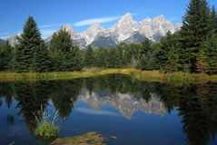 Parque nacional grande de Teton, Wyoming, EUA Fotos de Stock Royalty Free