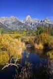 Parque nacional grande de Tetons Imagens de Stock