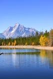 Parque nacional grande de Tetons Imagem de Stock