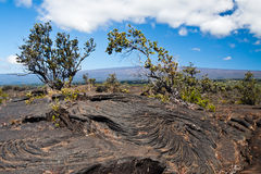 Parque nacional Havaí dos vulcões fotos de stock