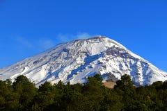 Parque nacional II de Popocatepetl fotos de stock
