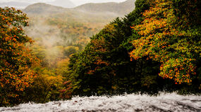 Parque nacional Japão de Nikko do rio de Daiya Imagem de Stock Royalty Free