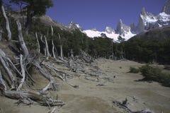 Parque nacional la Argentina Los Glaciares Fotos de archivo