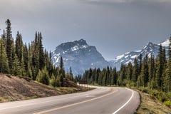Parque nacional máximo Alberta CA de Banff da dolomite fotografia de stock royalty free