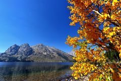 Parque nacional magnífico de Teton en otoño Imagen de archivo libre de regalías